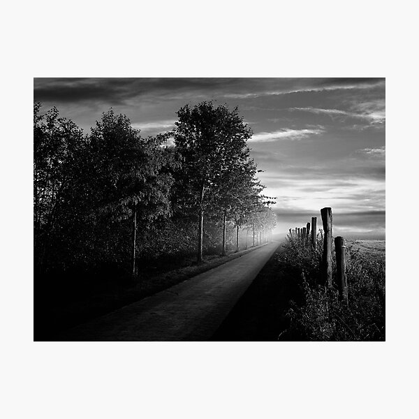 Path in the evening Photographic Print