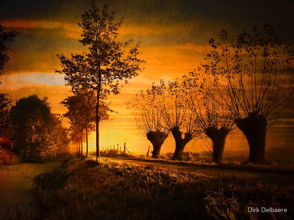 Pathway by Dirk Delbaere