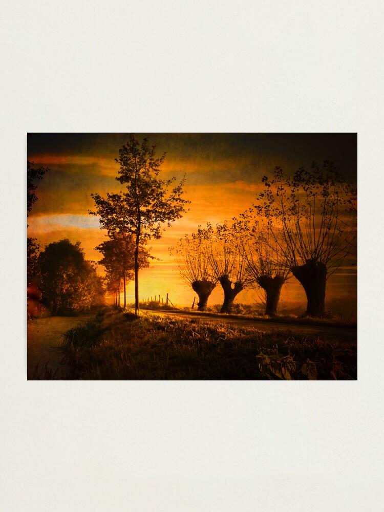 Alternate view of Pathway Photographic Print