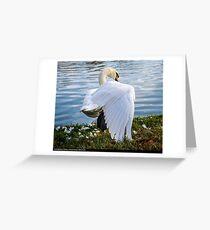 TAi Chi Swan Greeting Card