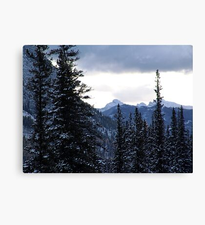 Another View Canvas Print