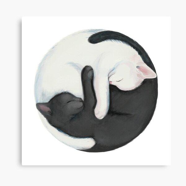Yin Yang Balancing Cats Canvas Print