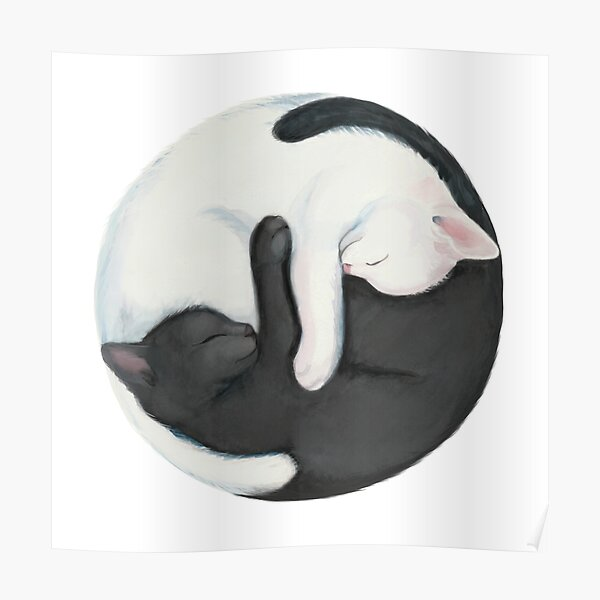 Yin Yang Balancing Cats Poster