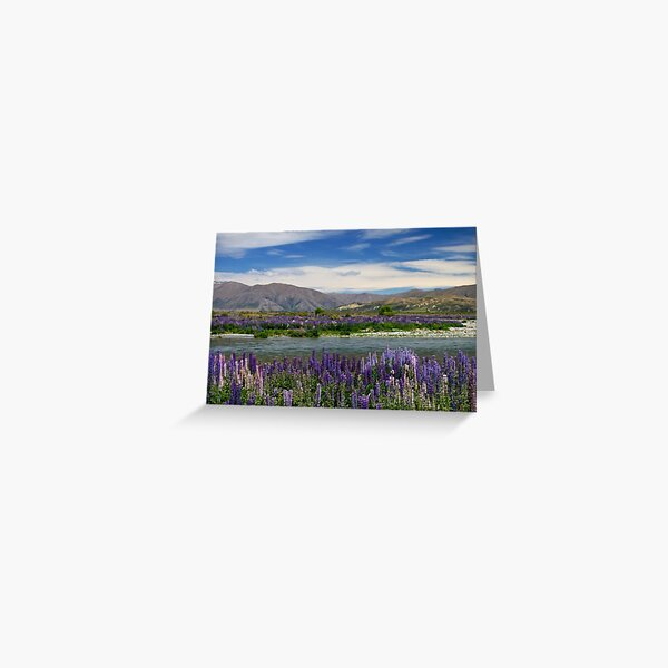 Lupin lined Ahuriri River - NZ Greeting Card