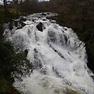 Swallow Falls_Wales_UK by Kay Cunningham