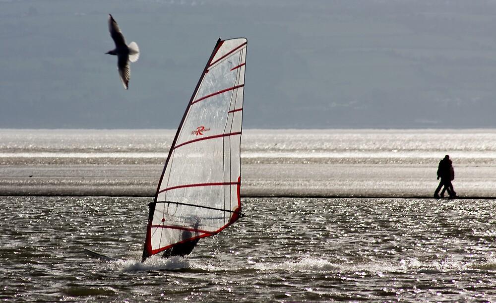 Land, sea, air by Mark E. Coward