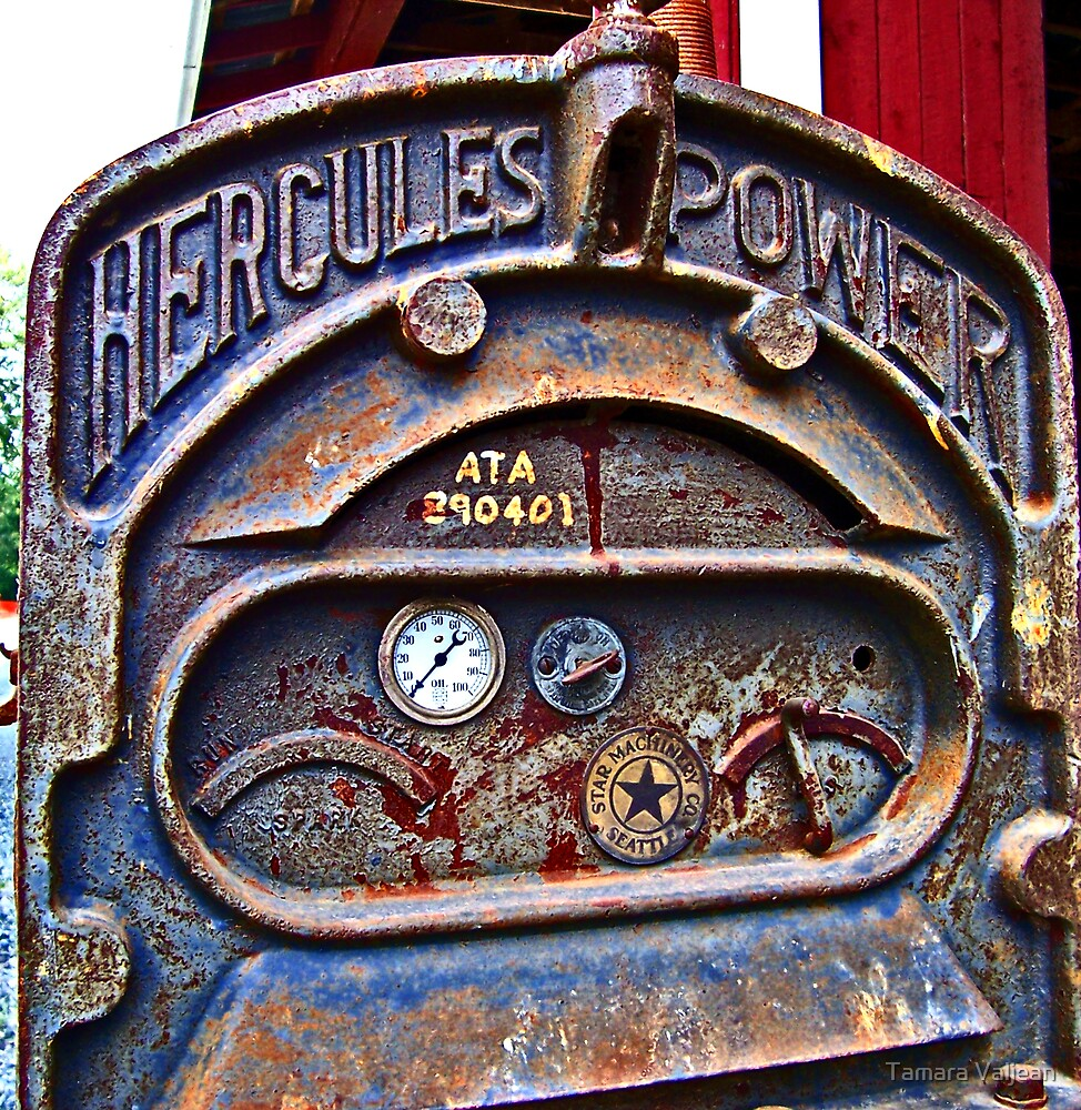 Hercules Power by Tamara Valjean