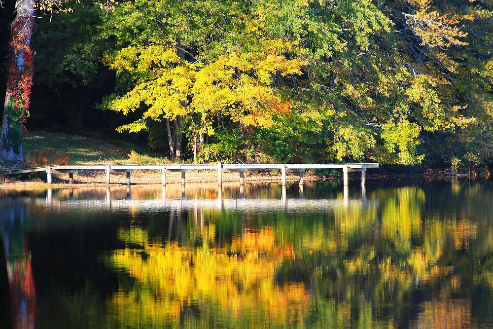 Autumn Morning ©DApixara by Artist Dapixara