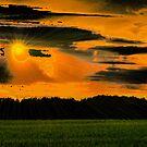 Ashen Sunset by velveteagle