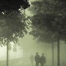 The mist by Carlos Neto