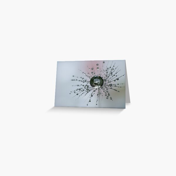 Dandelion Drop Ball Greeting Card