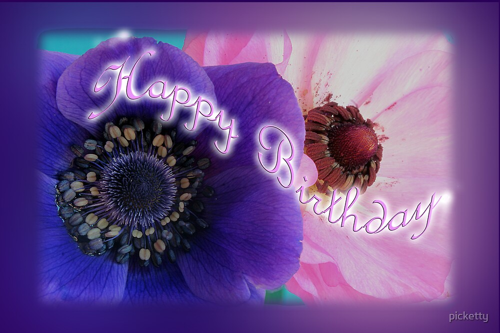 birthday anemones  by picketty