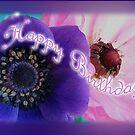 birthday anemones  by picketty