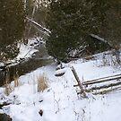 Fence in Winter... by Larry Llewellyn