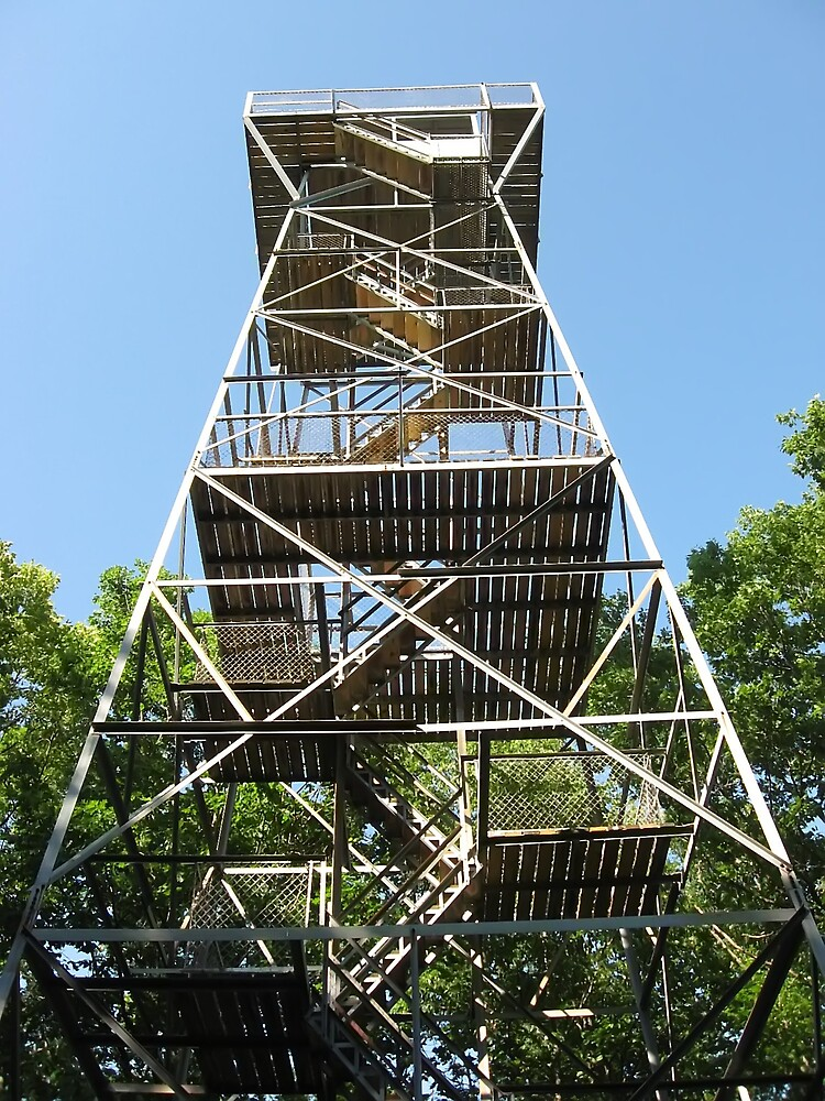 Lookout Tower by Tracy DeVore