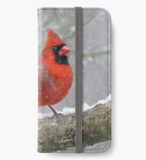 Oh, the Weather Outside is Frightful   iPhone Wallet/Case/Skin