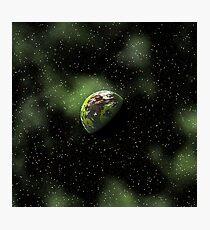 Green Cosmos Photographic Print