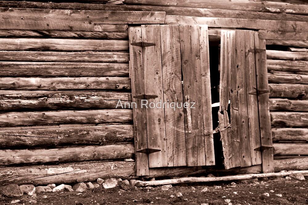Doors by Ann Rodriquez