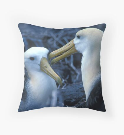 Albatros Pair on Galapagos Throw Pillow