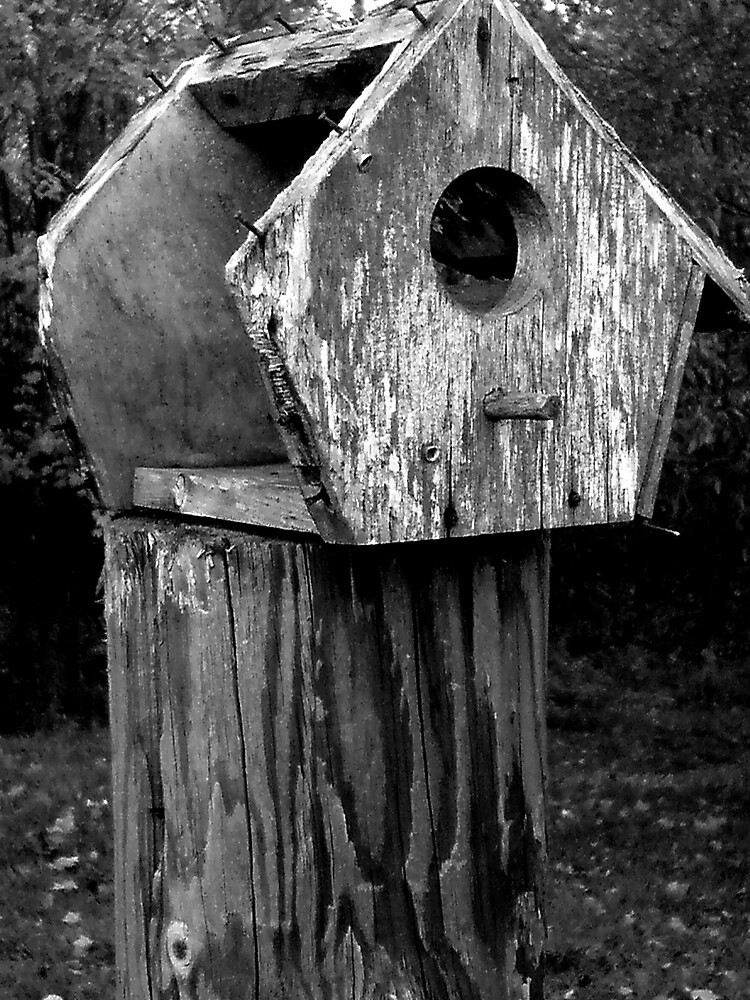 Poor Old Birdhouse by 13radley