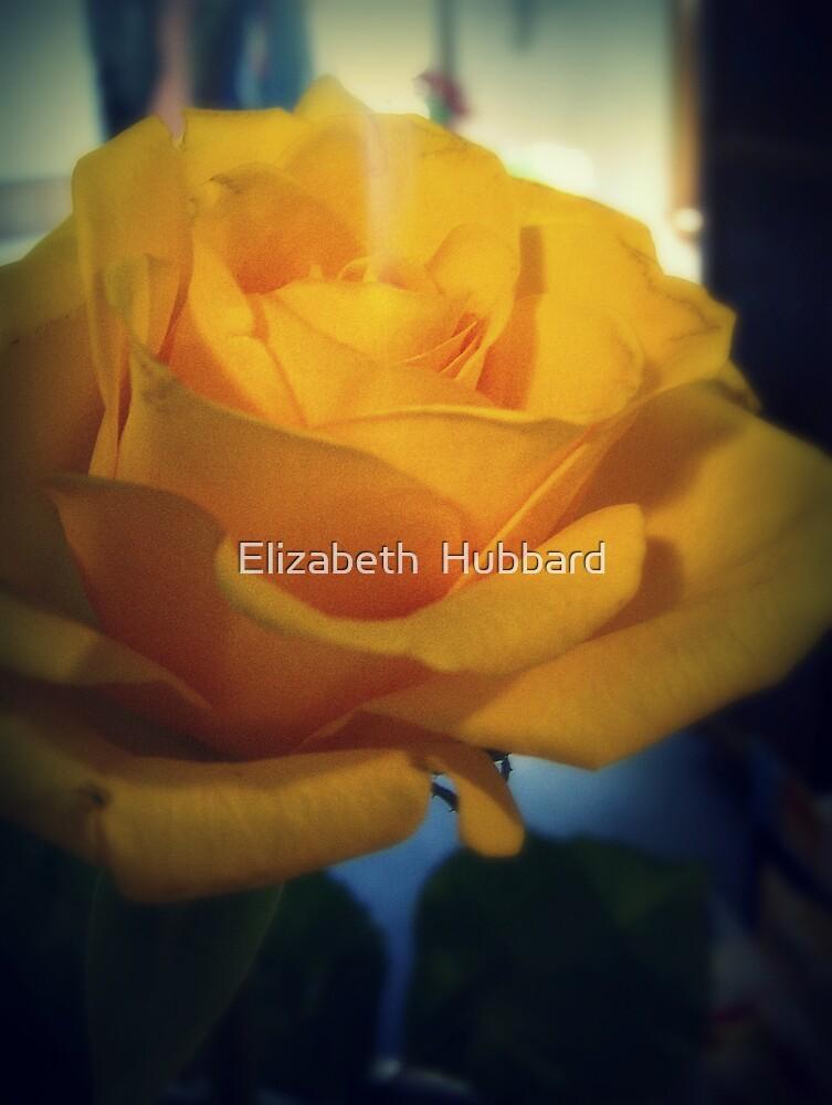 resolute by Elizabeth  Hubbard