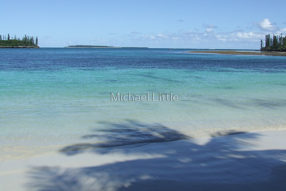 Isle of Pines Reef by Michael Little
