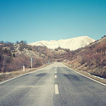 Road with mountain by salvatoreru