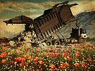 Spring Fields Forever by Alex Preiss