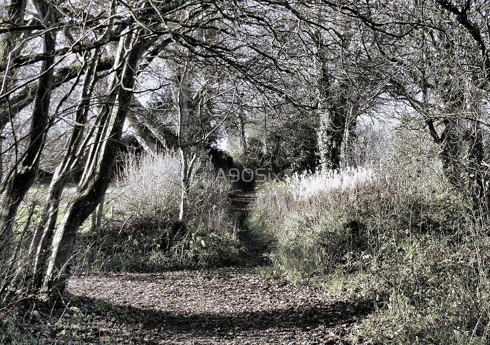 The Path Narrows by A90Six