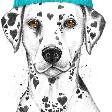 Dalmatian in hat by NikKor