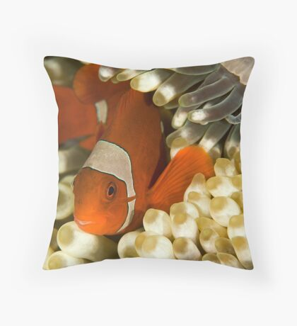 Clown Fish in Anemone Throw Pillow