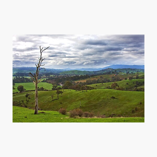 Acheron cutting- Goulburn River view Photographic Print