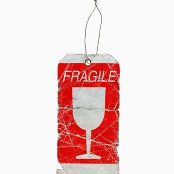 Fragile by Linkchvary