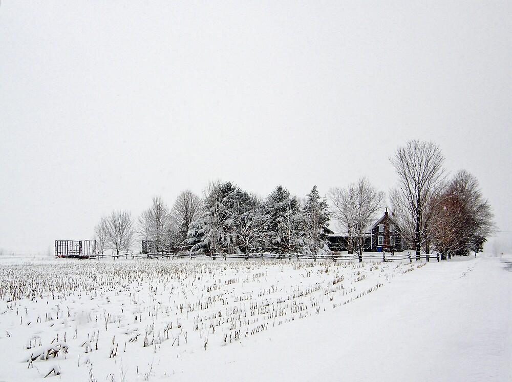 A True Country Winter by marchello