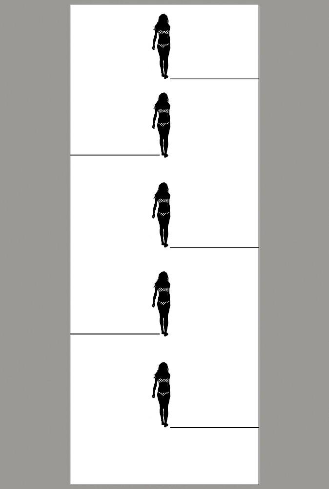 Walk the Line by Des Berwick