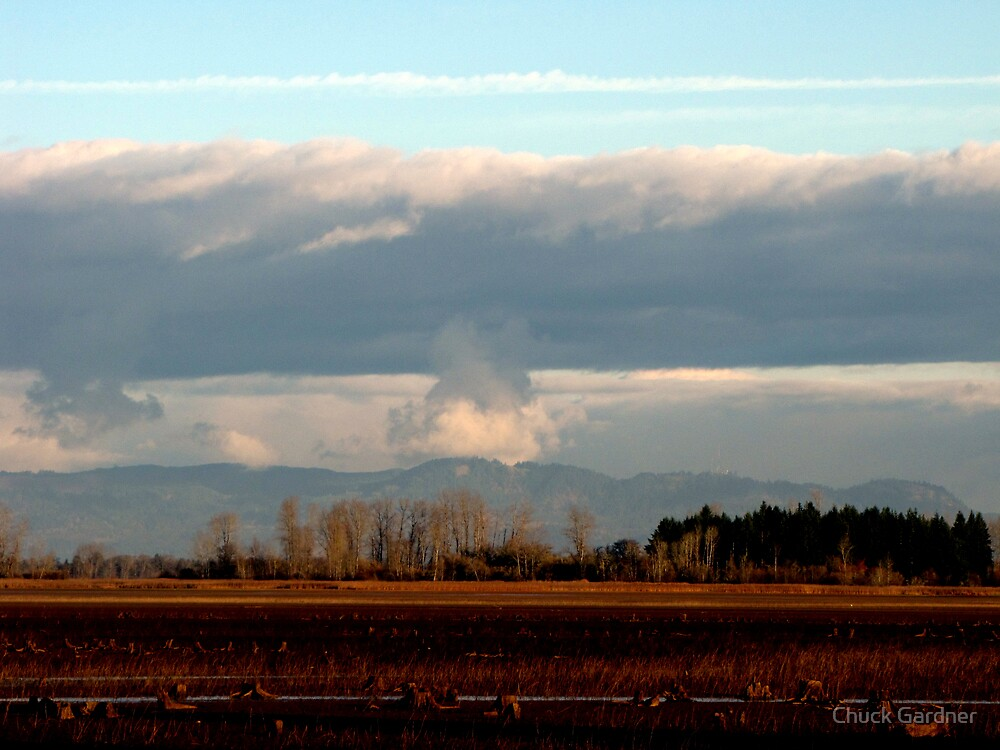 Giant Mushroom in the Sky by Chuck Gardner