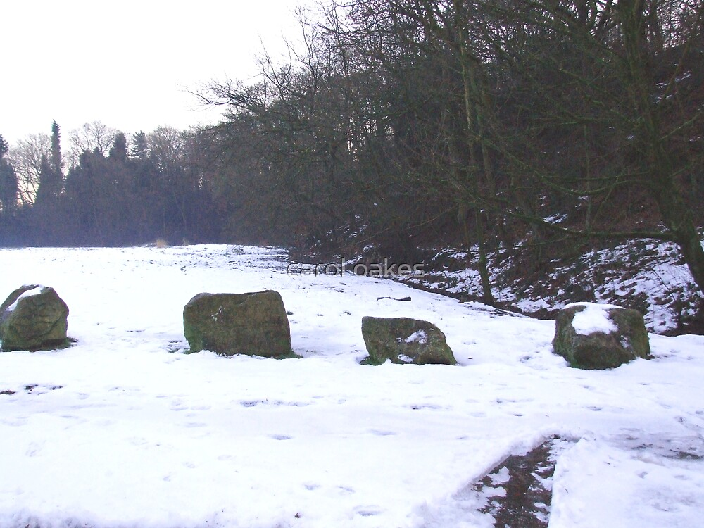 stones in snow by carol oakes