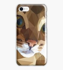 Abyssinian Cat iPhone Case/Skin