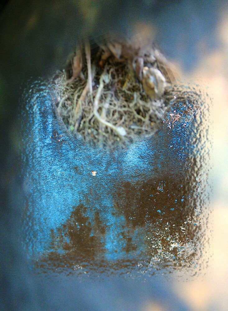 Nest edge by fuatnoor