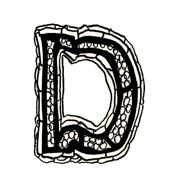Upper case black and white alphabet Letter D by HEVIFineart