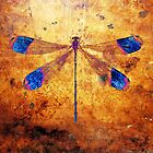 Dragonfly in Amber by WesternExposure