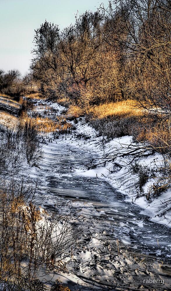 """Frozen Creek"" by raberry"