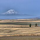 Klickitat County by Larry Davis