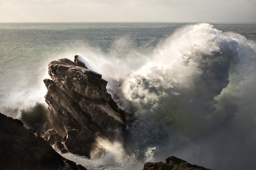« The stone whale » par Aurelien CURTET