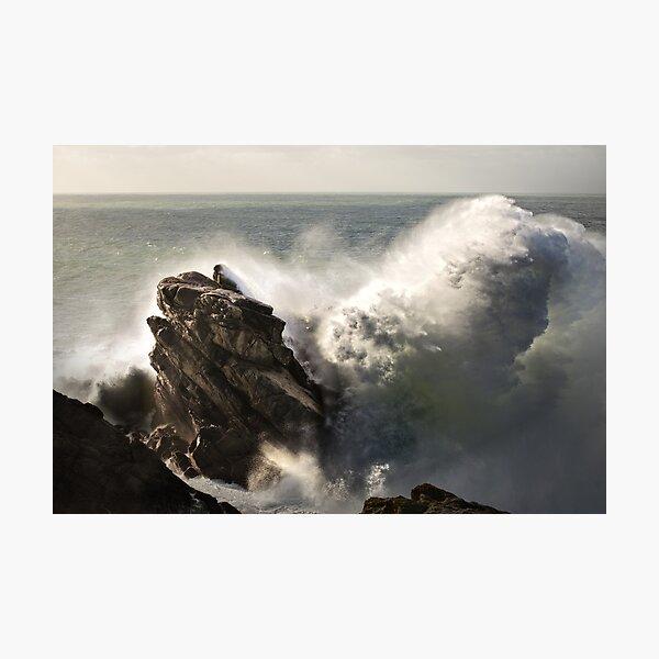 The stone whale Impression photo