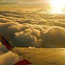 Flying High by Pamela Hubbard