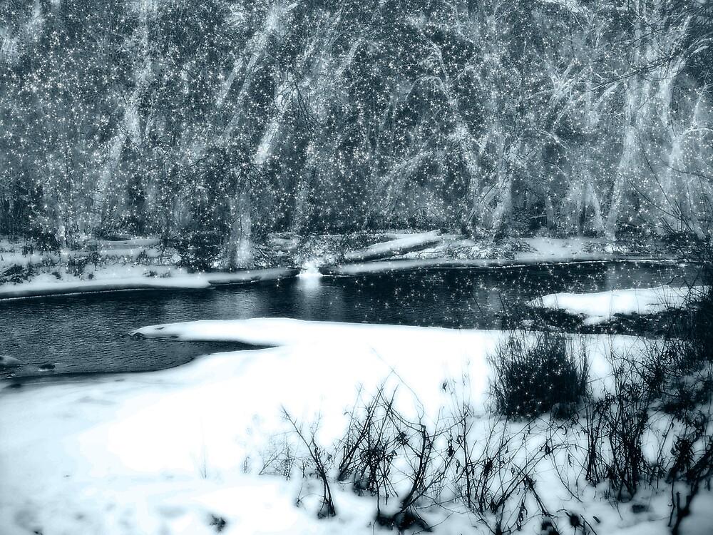 winter's magic by Rachel  McKinnie