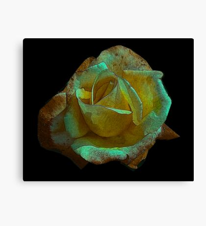 Rose -#2 Canvas Print