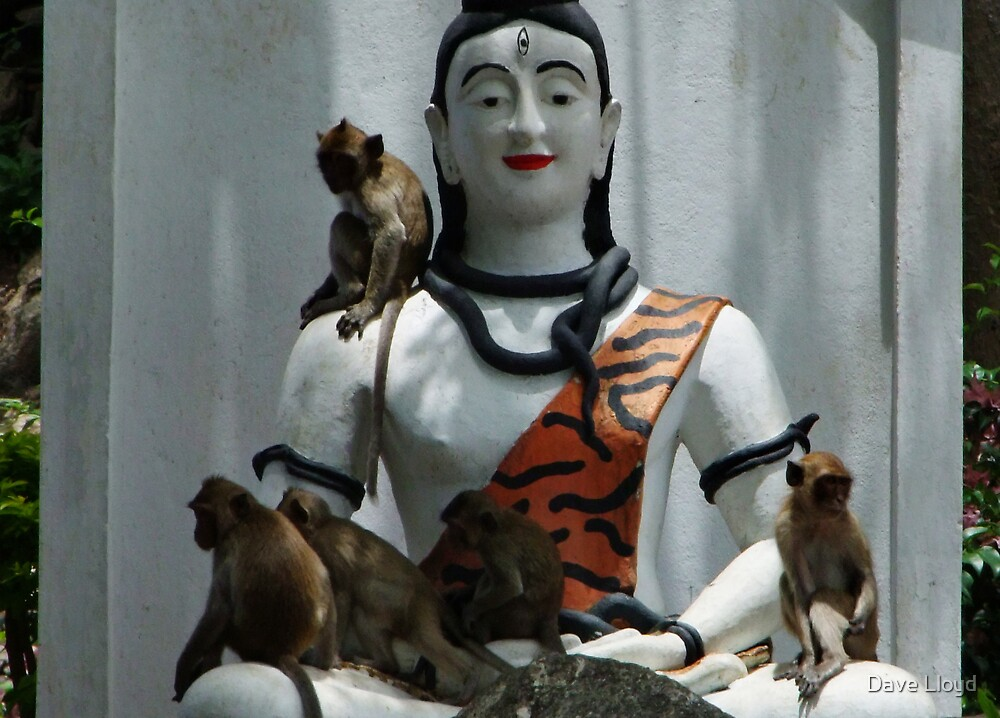 Temple Figure And Monkeys by Dave Lloyd