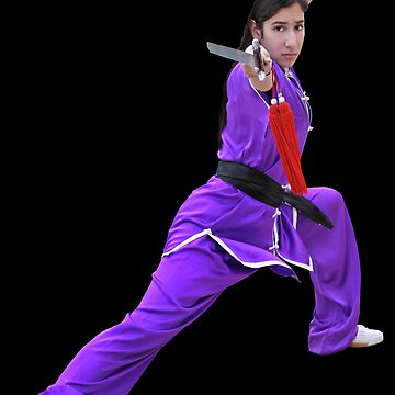 Kung-Fu Girl by lollypopmedia